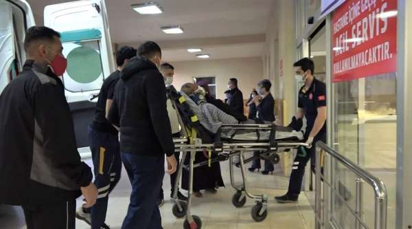 Eşeğin saldırısına uğrayan yaşlı adam yaralandı