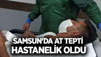 Samsun'da at tepti, hastanelik oldu