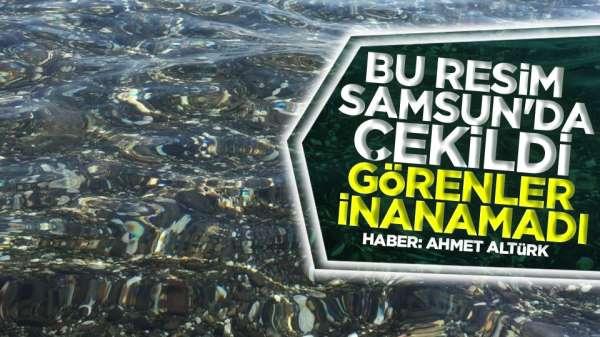 Samsun'da bu bölgedeki denizin temizliği görenleri hayran bıraktı