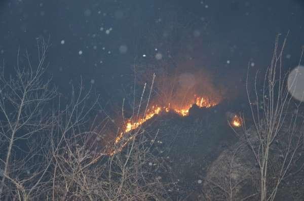Ordu'da örtü yangınları devam ediyor