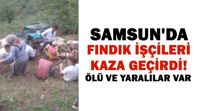 Samsun'da fındık işçileri kaza geçirdi! Ölü ve yaralılar var