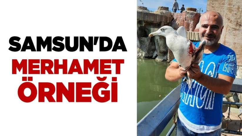 Samsun'da merhamet örneği