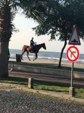 Samsun Atakum sahilinde atlı gezintiyi görenler şok oldu