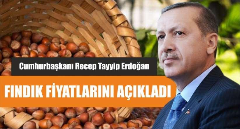 Fındık fiyatı ne kadar? Cumhurbaşkanı Erdoğan açıkladı