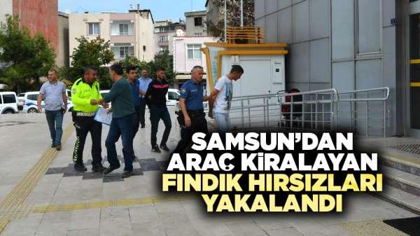 Samsun'dan araç kiralayan fındık hırsızları yakalandı