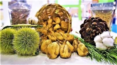 Aydın incir, kestane, yağlık zeytin ve kerevizde liderliğini korudu