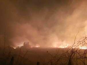 Çarşamba'da orman yangını