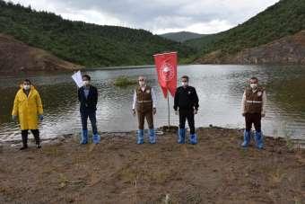 Manisa'da 72 bin pullu sazan balığı yavrusu suyla buluştu