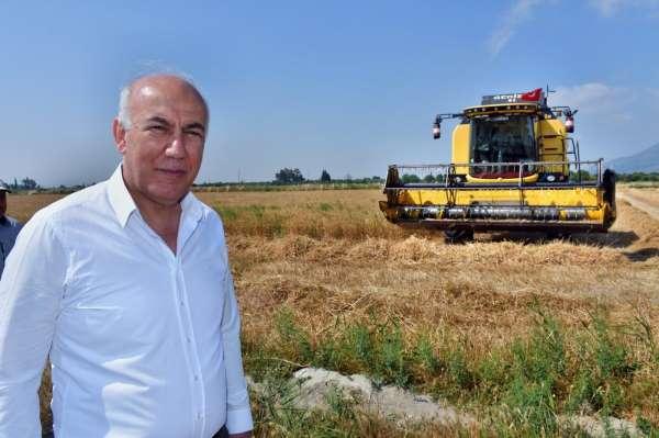 Başkan Tuncelden buğday hasadı