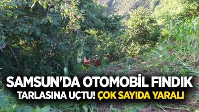 Samsun'da otomobil fındık tarlasına uçtu! Çok sayıda yaralı