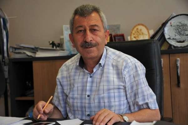 Samsun'da 'mavi yemiş' üretimi yaygınlaşıyor