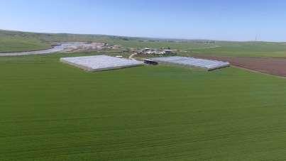 Diyarbakır'da tarım alanında kurulan 620 tesise 308 milyon liralık hibe desteği
