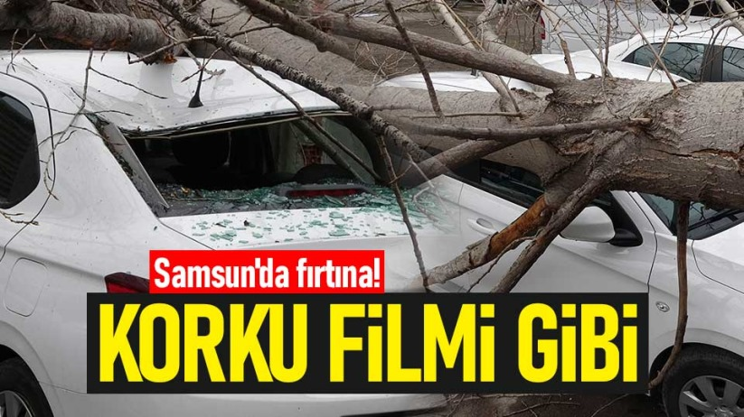 Samsun'da fırtına! Korku filmi gibi