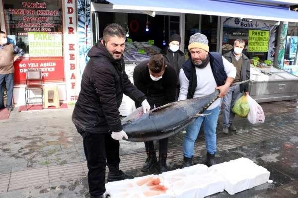 75 kilogramlık orkinos balığını 3 kişi zor kaldırdı