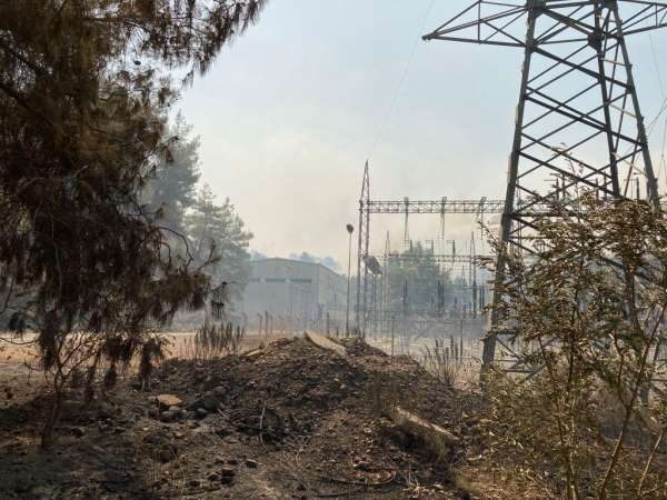 Manavgatta çıkan yangın elektrik santrali yakınlarına kadar geldi