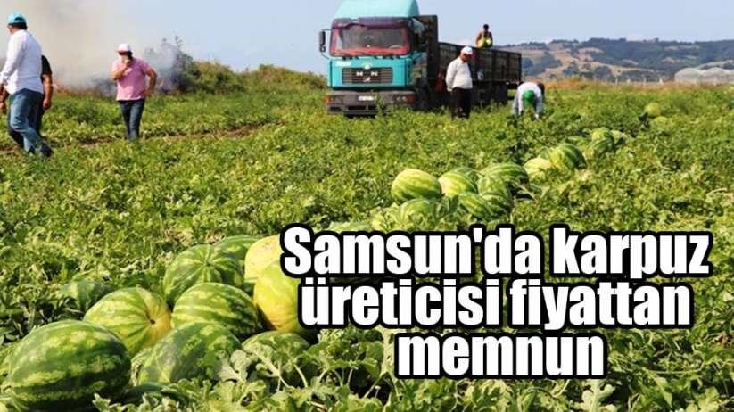 Samsun'da karpuz üreticisi fiyattan memnun