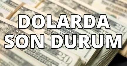 Dolar ne kadar, euro kaç TL? Döviz kurları 29 Ağustos 2020