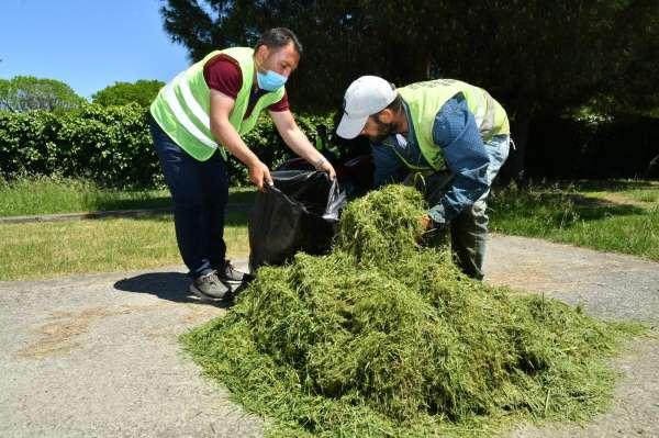 Budanan dal ve bitkiler gübreye dönüştürülerek yeniden kullanıyor