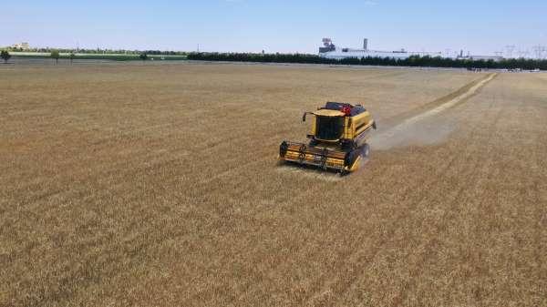 Konyada atıl araziler ekilip hasadı yapıldı, geliri vatandaşa aktarılacak