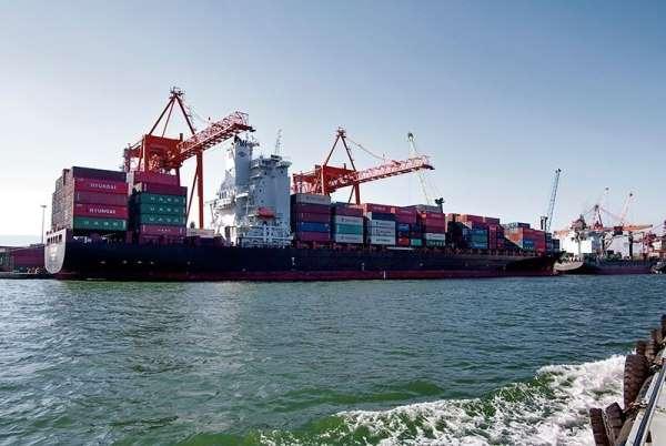 Mersinin ihracatı mayıs ayında yüzde 21,4 arttı