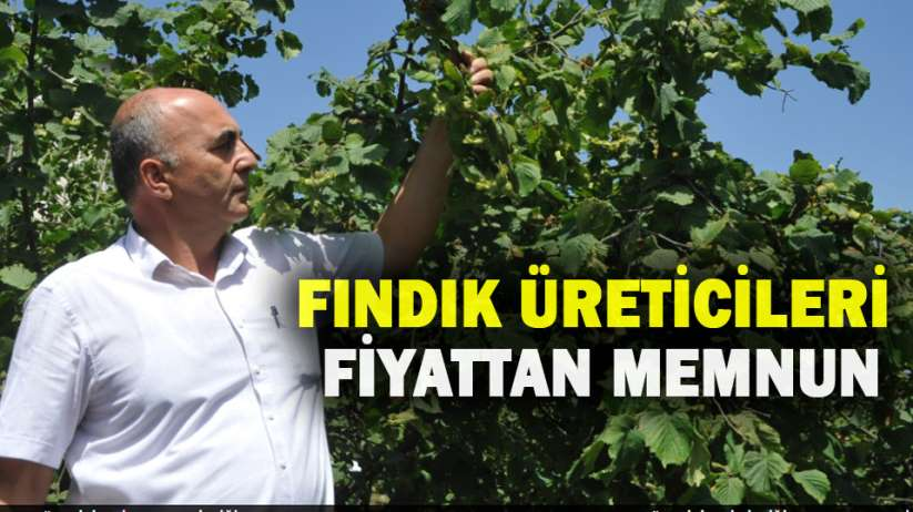 Samsun'da fındık üreticileri fiyattan memnun