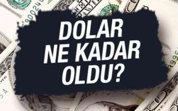 Dolar ne kadar oldu? (30.07.2020)