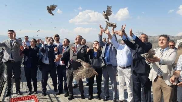 Tabiat parkına 200 keklik salındı