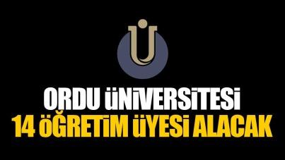 Ordu Üniversitesi 14 Öğretim Üyesi alacak