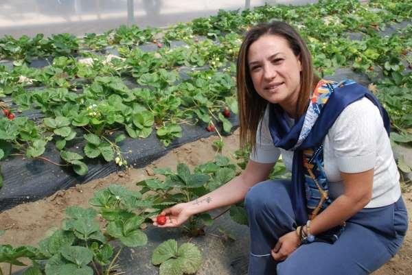 Selçukun gözbebeği Efes Tarlası Yaşam Köyü açılıyor