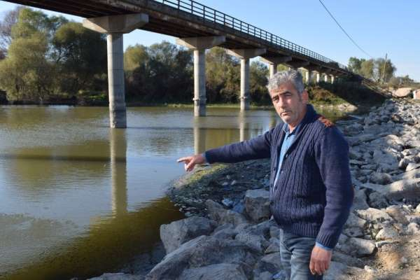 Bursa'da balık ölümleri devam ediyor
