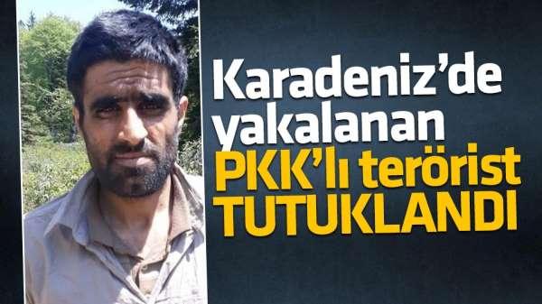 Karadeniz'de yakalanan PKK'lı tutuklandı