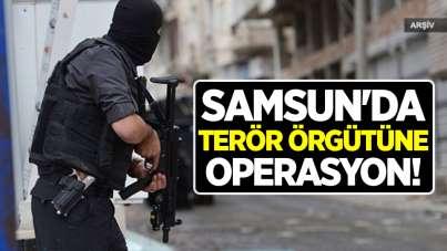 Samsun'da terör örgütüne operasyon!