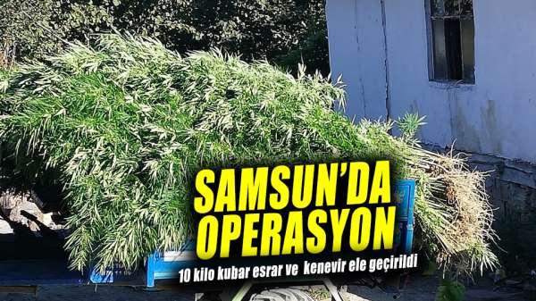 Samsun'da operasyon! 10 kilo kubar esrar ve kenevir ele geçirildi