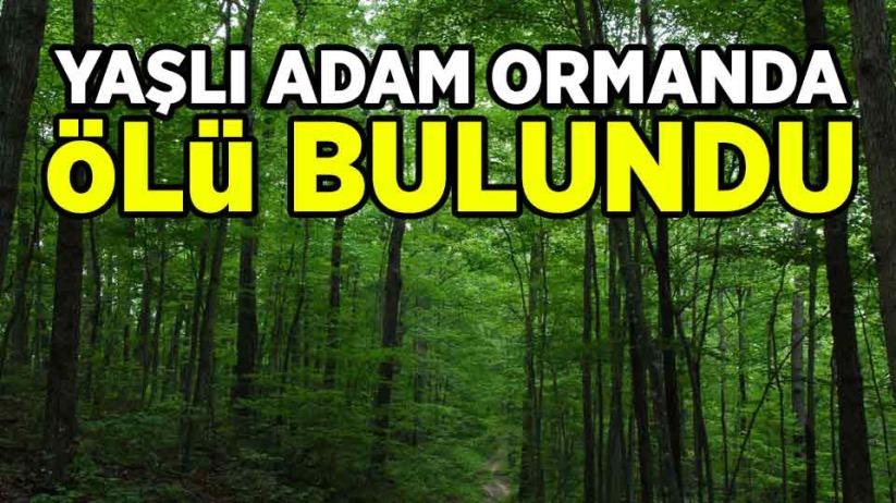 Yaşlı adam ormanda ölü bulundu