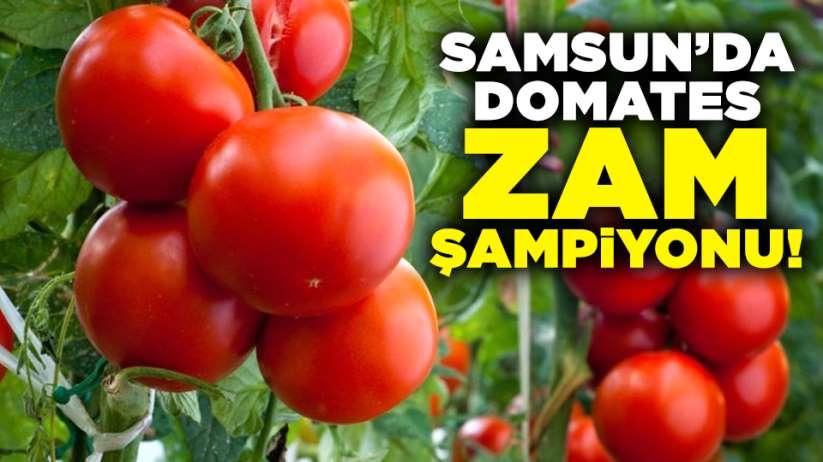 Samsun'da zam şampiyonu domates!