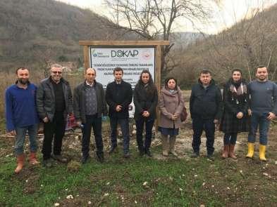 ODÜ'den fındık bahçelerinin yenilenmesine bilimsel destek