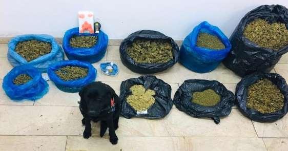 Amasya'da uyuşturucu operasyonu: 16,3 kilo uyuşturucu ele geçildi
