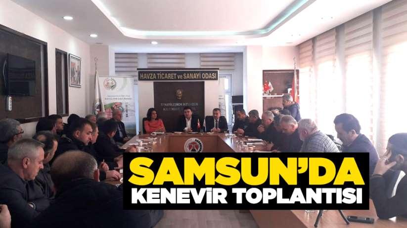 Samsun'da kenevir toplantısı