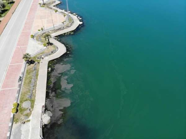 Karadenizde müsilaj tehlikesi