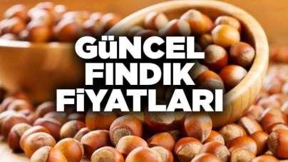 5 Mart Perşembe Samsun fındık fiyatları ne kadar? Güncel fındık fiyatları