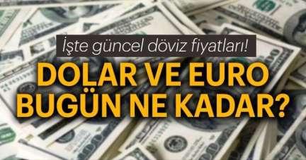Dolar TL kuru ne kadar? 8 Temmuz euro, dolar