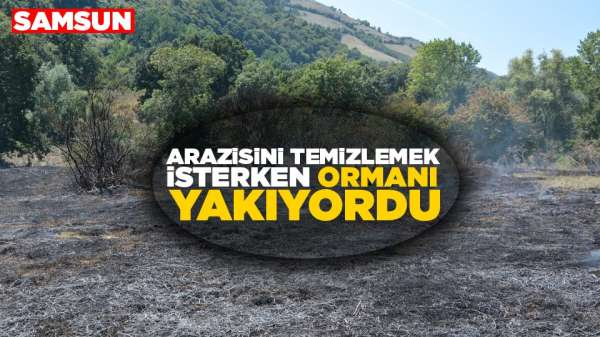 Samsun'da arazisini temizlemek isterken ormanı yakıyordu