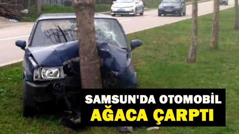 Samsunda otomobil ağaca çarptı