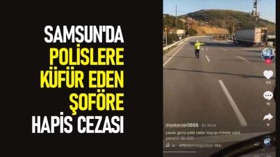 Samsun'da polislere küfür eden şoföre hapis cezası