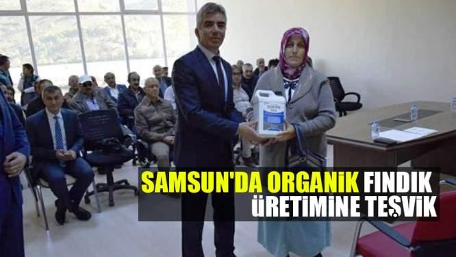Samsun'da Organik Fındık Üretimine Teşvik