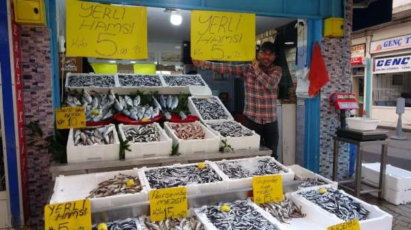 Hamsi 5 liraya düştü, vatandaşlar balıkçılara akın etti
