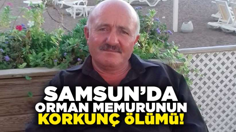Samsun'da orman memurunun korkunç ölümü