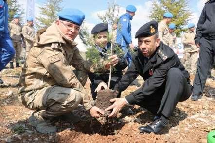 Jandarma'dan '180 yılda 180 bin ağaç'