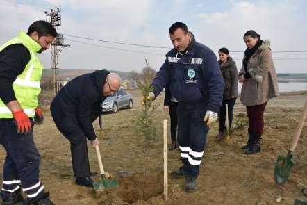Türkmenli Göleti havzasına bin 200 fidan dikildi