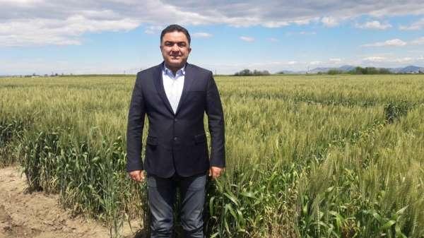 Doğru: 'Buğdayın maliyeti bir yılda yüzde 55 arttı'